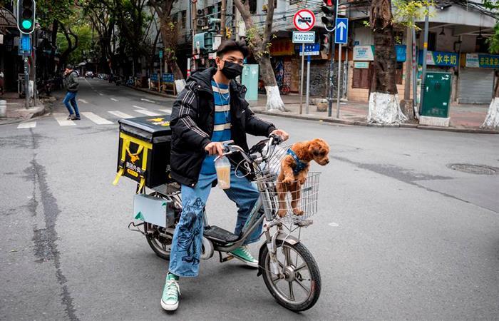 Mascotas son abandonadas por temor al coronavirus (Foto: EFE).