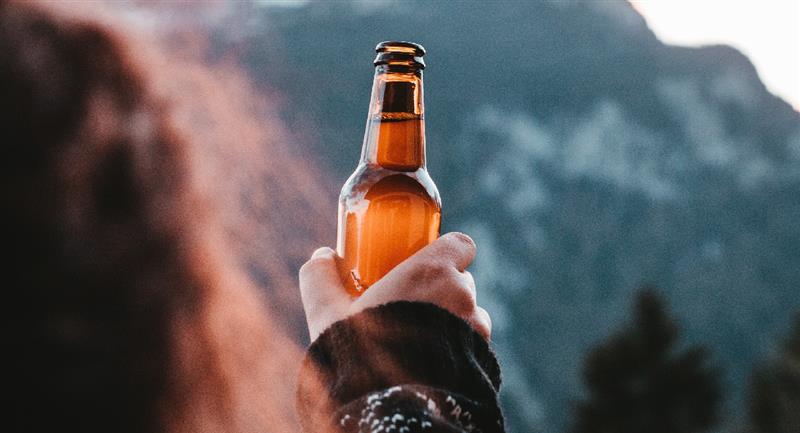 Gana 20 mil dólares por caminar en el bosque y beber cerveza. Foto: Pexels