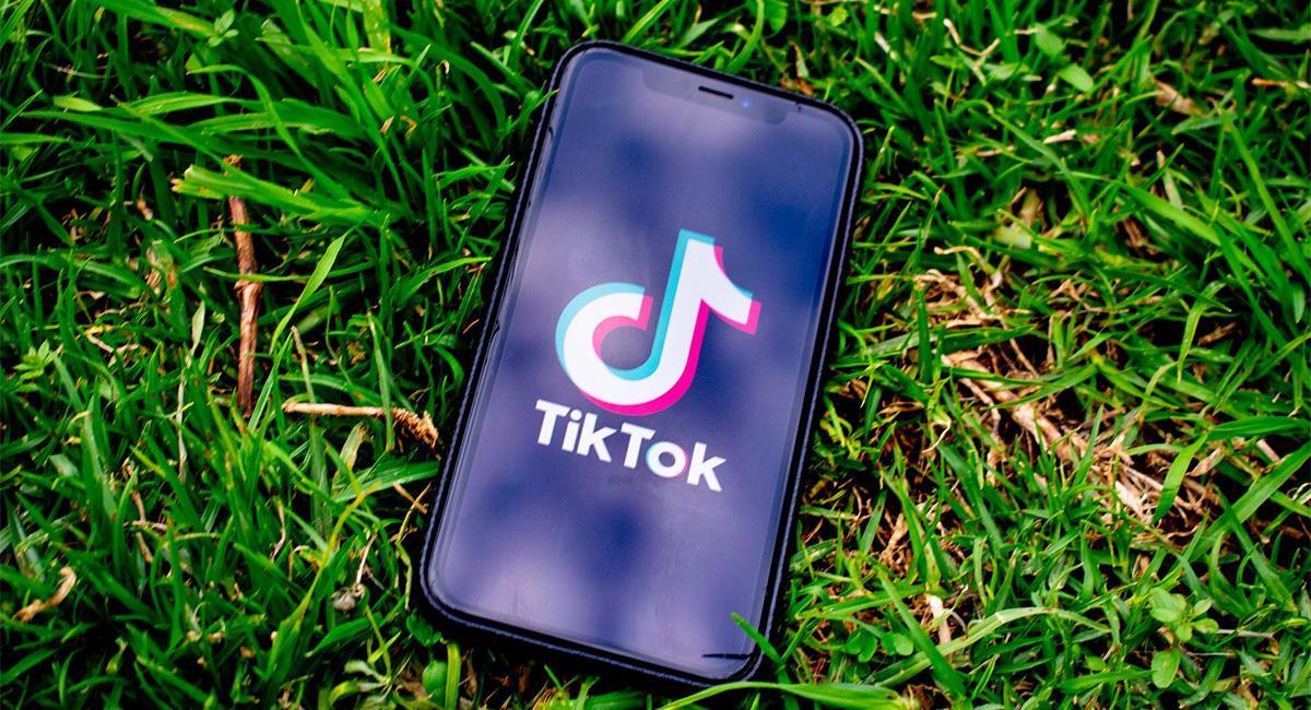Twitter quiere comprar Tik Tok en Estados Unidos. Foto: Pixabay