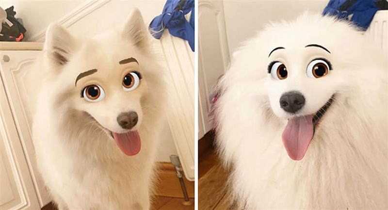 Filtro de Snapchat convierte a tu perro en personaje de Disney . Foto: Twitter