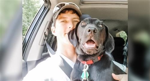 Joven sordo adopta un perro también sordo y le enseña lenguaje de señas para jugar con él