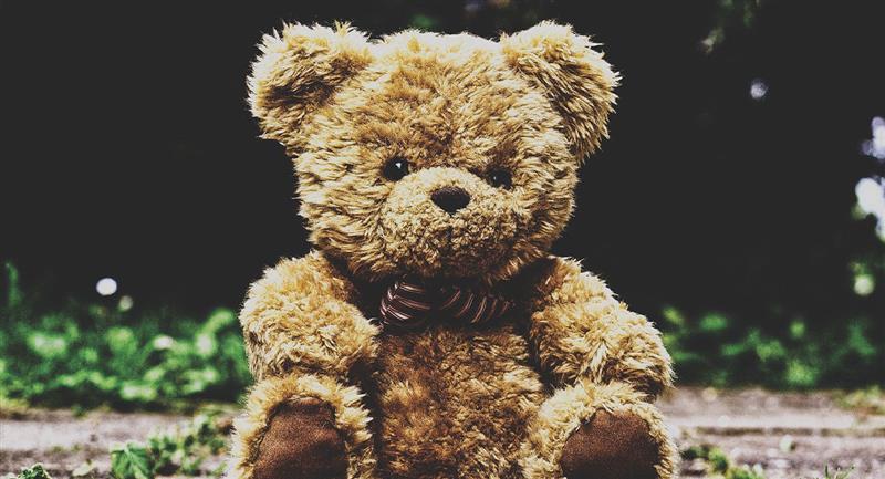 Reto Visual: ¿Serás capaz de encontrar al oso?. Foto: Captura