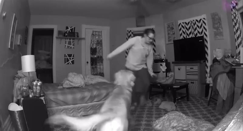 Perrito se vuelve viral al evitar que su dueña borracha se caiga. Foto: Youtube