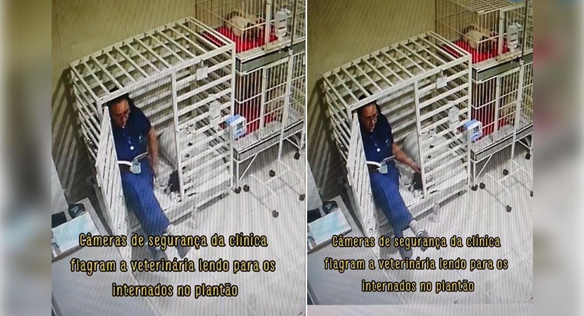 Veterinaria les lee cuentos a sus pacientes perrunos. Foto: TikTok @yasmimfarhat