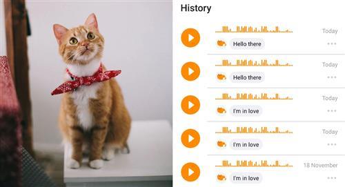 MeowTalk: La aplicación que traduce los maullidos de tu gato ya está disponible