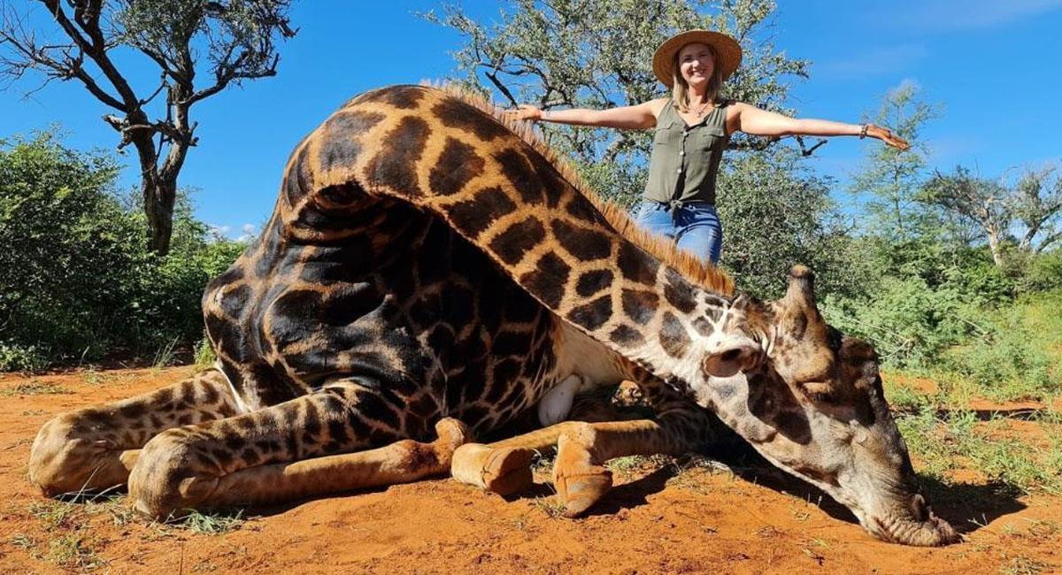 Mujer mató a una jirafa para ayudar a los animales en peligro de extinción. Foto: Twitter @MarkoSilberhand