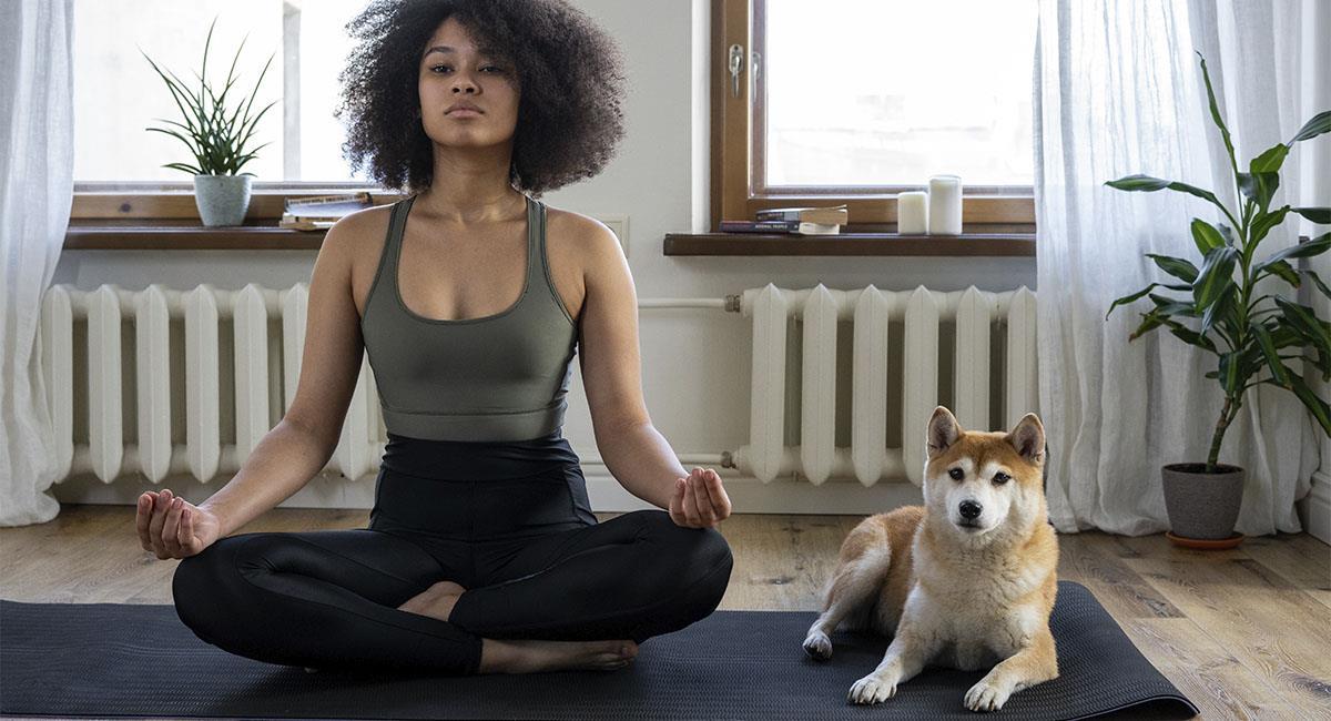 El 86% de mujeres deja a su pareja si no acepta a su perro. Foto: Pexels