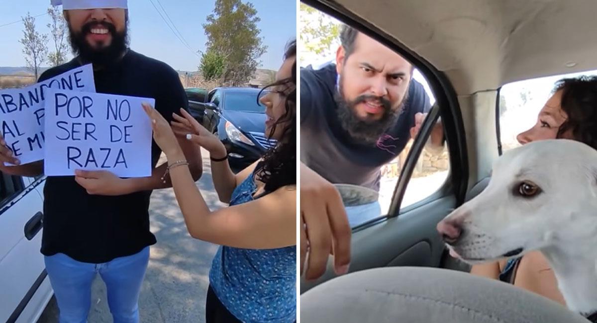 Mujer terminó con su novio por abandonar a su perro. Foto: Youtube